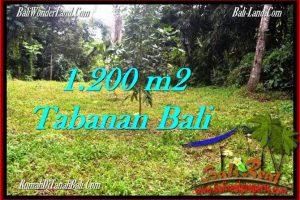 Affordable PROPERTY TABANAN BALI 1,200 m2 LAND FOR SALE TJTB278