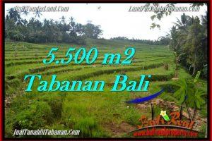 Magnificent TABANAN BALI 5,500 m2 LAND FOR SALE TJTB280