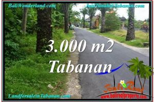 FOR SALE Affordable 3,000 m2 LAND IN TABANAN TJTB297
