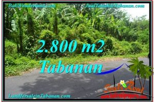 Exotic Tabanan Kerambitan BALI LAND FOR SALE TJTB300