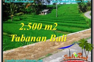 2,500 m2 LAND FOR SALE IN Tabanan Penebel BALI TJTB305