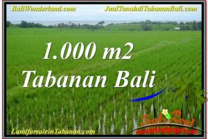 Affordable PROPERTY Tabanan Kerambitan LAND FOR SALE TJTB307