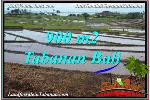 Affordable PROPERTY LAND FOR SALE IN Tabanan Selemadeg BALI TJTB308