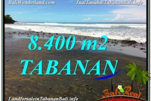 Magnificent PROPERTY Tabanan Selemadeg BALI 8,400 m2 LAND FOR SALE TJTB326