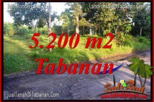 Beautiful PROPERTY Tabanan Selemadeg BALI LAND FOR SALE TJTB334