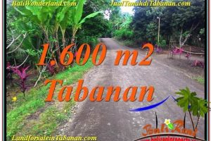 Beautiful LAND IN Tabanan Selemadeg FOR SALE TJTB337