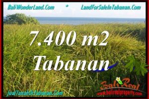 Beautiful 7,400 m2 LAND SALE IN TABANAN BALI TJTB341