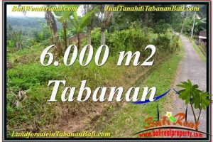 Magnificent PROPERTY Tabanan Selemadeg 6,000 m2 LAND FOR SALE TJTB349