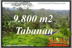 Exotic TABANAN 9,800 m2 LAND FOR SALE TJTB350