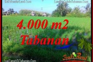 FOR SALE Exotic LAND IN TABANAN BALI TJTB352