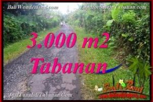 Beautiful PROPERTY  3,000 m2 LAND FOR SALE in bali