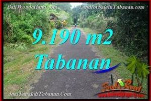 Beautiful LAND IN Tabanan Selemadeg Timur BALI FOR SALE TJTB368
