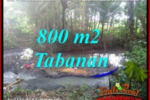 FOR SALE Beautiful LAND IN TABANAN BALI TJTB384