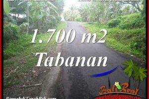LAND IN TABANAN SELEMADEG BALI FOR SALE TJTB385