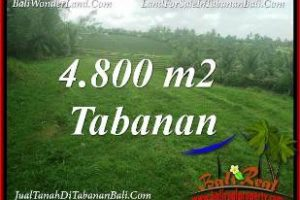 Beautiful LAND IN TABANAN SELEMADEG BALI FOR SALE TJTB387