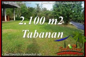 Exotic PROPERTY LAND FOR SALE IN TABANAN SELEMADEG BALI TJTB393
