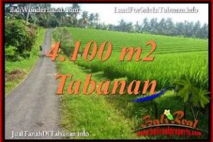 FOR SALE Cheap property 4,100 m2 LAND IN TABANAN SELEMADEG TJTB394