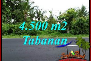 Magnificent Tabanan Bali Land for sale TJTB395