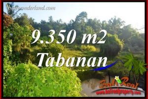 FOR sale Beautiful Property 9,350 m2 Land in Tabanan Selemadeg Bali TJTB409