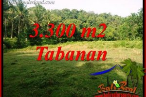 Exotic 3,300 m2 Land for sale in Tabanan Selemadeg TJTB413