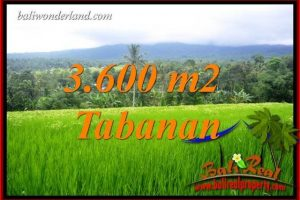 Magnificent 3,600 m2 Land in Tabanan Penebel for sale TJTB415