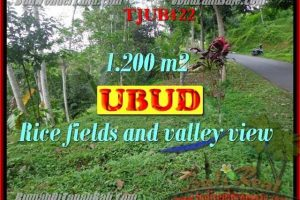 FOR SALE LAND IN Ubud Tegalalang TJUB422
