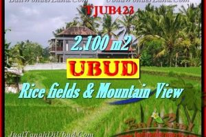 FOR SALE Beautiful PROPERTY 2,100 m2 LAND IN UBUD BALI TJUB423