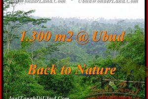 Affordable UBUD 1,300 m2 LAND FOR SALE TJUB481