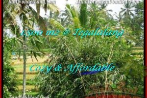 Beautiful 1,500 m2 LAND IN UBUD BALI FOR SALE TJUB489