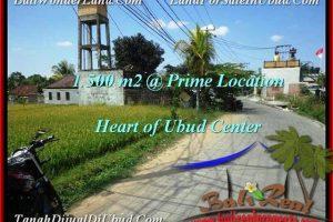 Exotic 1,500 m2 LAND FOR SALE IN UBUD BALI TJUB508