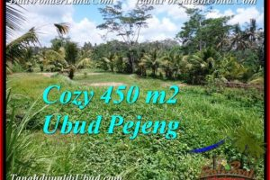 Magnificent UBUD BALI 450 m2 LAND FOR SALE TJUB535