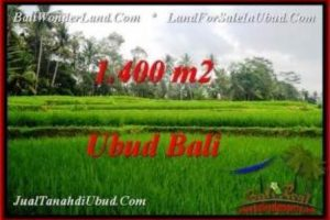Magnificent PROPERTY Ubud Pejeng 1,400 m2 LAND FOR SALE TJUB539