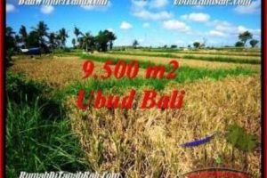 Magnificent LAND SALE IN UBUD TJUB548