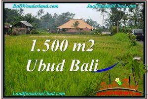 Beautiful PROPERTY Ubud Tampak Siring 1,500 m2 LAND FOR SALE TJUB558