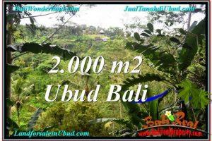 FOR SALE Beautiful 2,000 m2 LAND IN UBUD BALI TJUB573