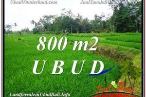 Exotic PROPERTY 800 m2 LAND IN Ubud Pejeng FOR SALE TJUB581