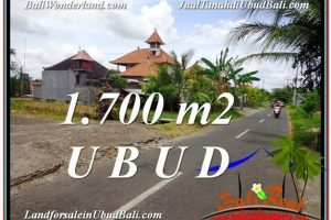 LAND FOR SALE IN Sentral Ubud BALI TJUB588