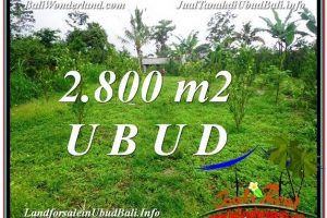 Beautiful UBUD BALI 2,800 m2 LAND FOR SALE TJUB592