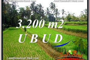 Magnificent LAND SALE IN Ubud Tegalalang BALI TJUB594
