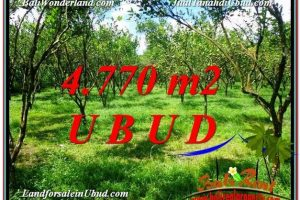Exotic PROPERTY LAND FOR SALE IN UBUD TJUB598