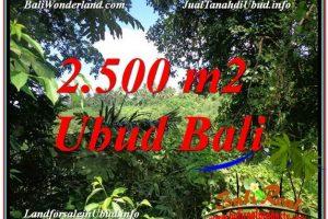 Ubud Pejeng BALI LAND FOR SALE TJUB605