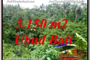 3,150 m2 LAND IN UBUD FOR SALE TJUB608