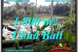 FOR SALE Magnificent PROPERTY 1,800 m2 LAND IN UBUD BALI TJUB616