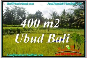 FOR SALE Exotic PROPERTY 400 m2 LAND IN Ubud Pejeng BALI TJUB627