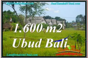 Exotic PROPERTY 1,600 m2 LAND IN Sentral / Ubud Center FOR SALE TJUB633