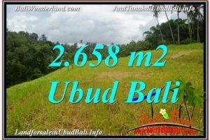 FOR SALE Affordable LAND IN Sentral / Ubud Center BALI TJUB641