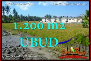 FOR SALE Beautiful PROPERTY LAND IN UBUD TJUB663