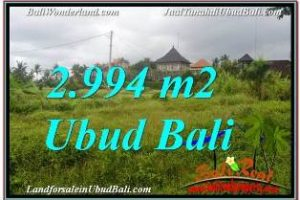 Magnificent PROPERTY 2,994 m2 LAND FOR SALE IN SENTRAL UBUD BALI TJUB672