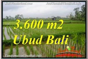 FOR SALE Beautiful PROPERTY 3,600 m2 LAND IN UBUD TEGALALANG TJUB673