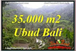 LAND IN UBUD FOR SALE TJUB674